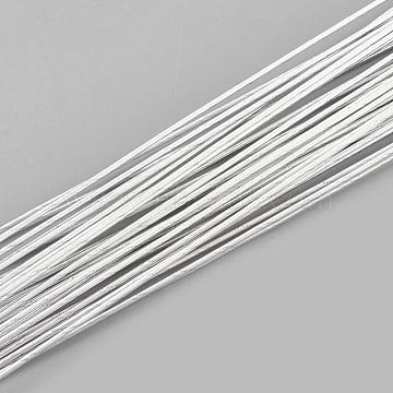 Iron Wire, WhiteSmoke, 22 Gauge, 0.6mm; 60cm/strand; about 50strand/bag(X-MW-S002-02F-0.6mm)