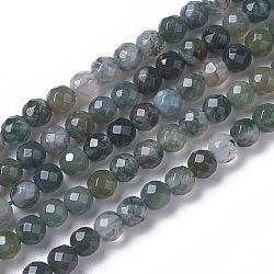 """Chapelets de perles en agate mousse naturelle, facette, rond, 3~3.5x2.5~3mm, trou: 0.3mm; environ 114~141 pcs/chapelet, 15.1~16.4"""" (38.4~41.8 cm)(X-G-F596-21-3mm)"""