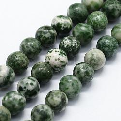 """Chapelets de perles en jaspe à pois verts naturels, rond, 4mm, trou: 0.6mm; environ 95 pcs/chapelet, 14.76"""" (37.5 cm)(G-I199-30-4mm)"""