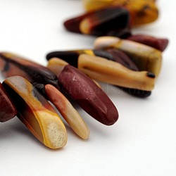 "Naturelles Mookaite perles brins, puces, 10~26x3~10x2~10mm, trou: 1 mm; environ 15.7""(G-J279-13)"