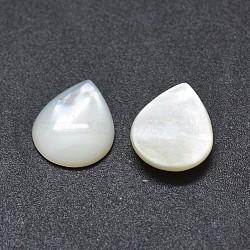 Cabochons en coquille, goutte , blanc, 12x10x2.5mm(SSHEL-E567-24D)