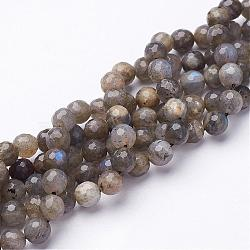 Natural Labradorite Beads Strands, Faceted, Round, 6mm, Hole: 0.8mm