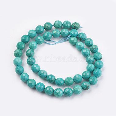 Natural Howlite Beads Strands(TURQ-C003-8mm-5)-2