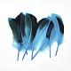 Feather Costume Accessories(X-FIND-Q046-15A)-1