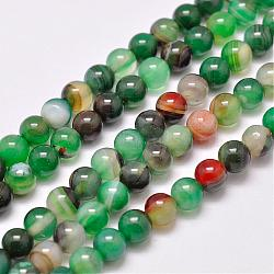Natural Striped Agate/Banded Agate Bead Strands, Dyed & Heated, Round, Grade A, LimeGreen, 6mm, Hole: 1mm; about 63pcs/strand, 14.7inches(375mm)