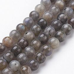 Natural Labradorite Bead Strands, Round, 6mm, Hole: 1mm; about 64pcs/strand, 15.3inches(390mm)
