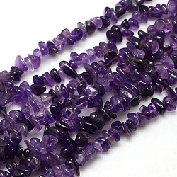 Natural Amethyst Chips Beads Strands, 8~14x4~8x3~6mm, Hole: 1mm; about 15~16inches