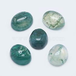 Natural Moss Agate Cabochons, Oval, 10x8x4mm(X-G-G759-Z12)