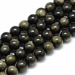 Chapelets de perles en obsidienne dorée naturelle, rond, 6x6mm, trou: 1mm; environ 62 pcs/chapelet, 15.5''(G-S150-20-6mm)