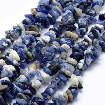 Natural Sodalite Beads Strands, Chip, 5~8mm, Hole: 1mm; about 33 inches(84cm)(X-G-P332-21)