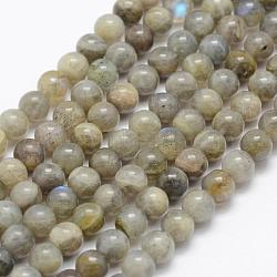 Natural Labradorite Beads Strands, Grade A-, Round, 6mm, Hole: 1mm; about 66pcs/strand, 15.3''(39cm)