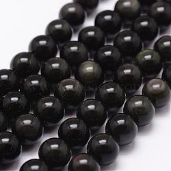 obsidienne naturelle perles brins, AAA grade, arrondir, noir, 8 mm, trou: 1 mm; environ 49 perle / brin, 15.7(G-D838-8mm-04)