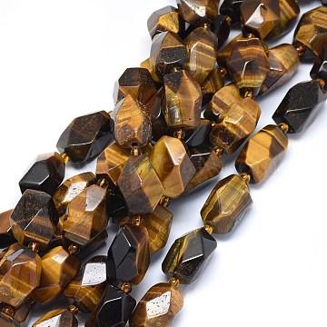 18mm Drum Tiger Eye Beads